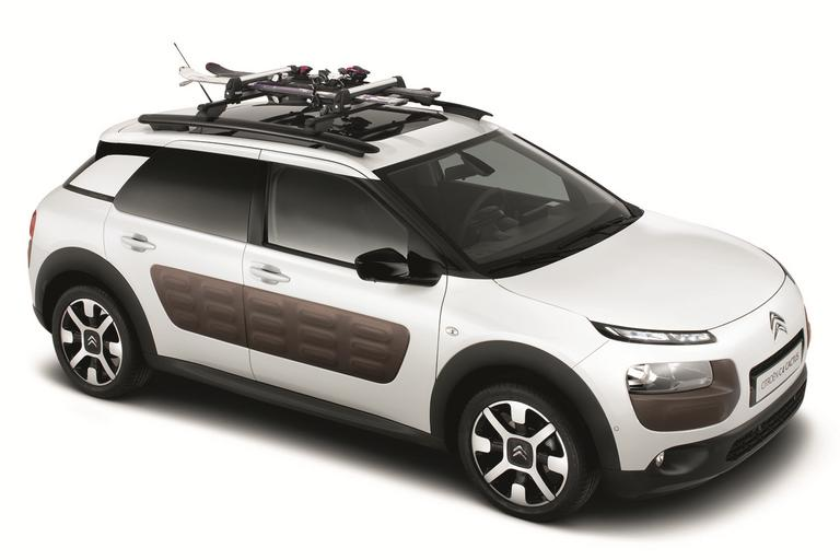 Ski-carrier on roof bars